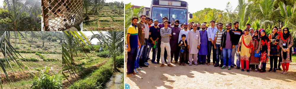 CED's Certificate in Entrepreneurship Students Visited Go Organic Agriculture Far